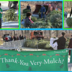 Much Ado about Mulchfest