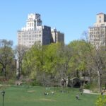 Prospect Park Nominated for Best Urban Park Award!