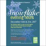 Sixth Annual Snowflake